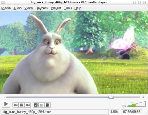 Linux: VLC Media Player