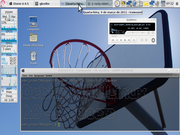 Gnome Debian 6.0 basketball