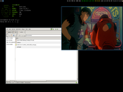 Tiling window manager Akira no Void