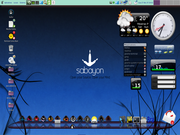 Gnome Cairo-Dock 2.3.